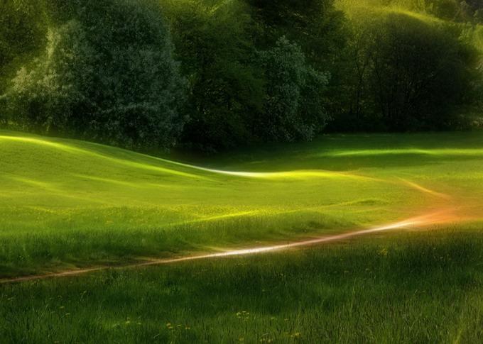 Dream Green Home